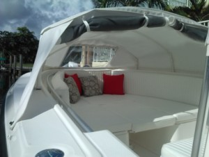 Angler 2900 center console boat fishing shade