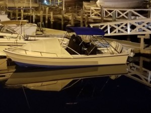 Aquasport 222 Osprey center console fishing boat with Bow dodger tent