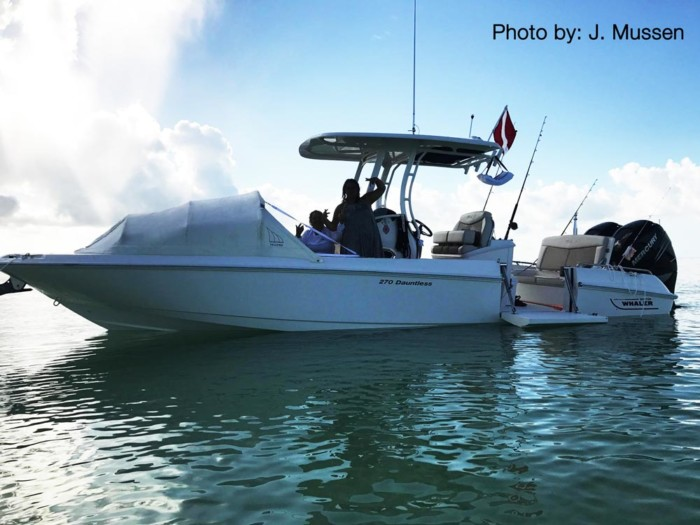 Florida Kays boating, The Element Bow dodger, marine canopy, Florida diving, Florida Snorkeling, boating trips, boat shade
