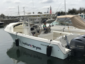 Sailfish 320 CC, Sailfish 3160 center console boat shade, Sailfish 290 cc bow shade bow dodger, Sailfish 2860 cc boat tent shade , marine canopy The Element bow dodger spray hood